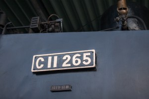 IMG 3793