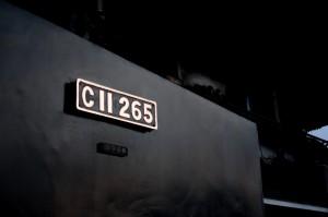 IMG 3799